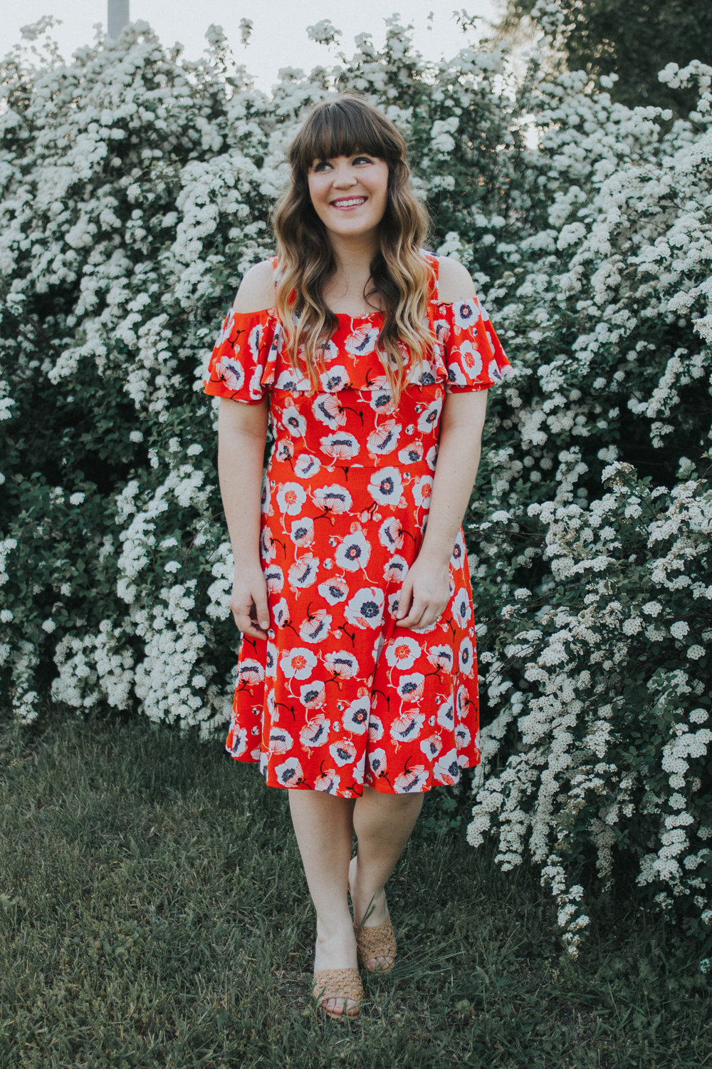 bbeb34f997a4 I decided to go with this Adrianna Papell Off Shoulder Short Sleeve Fit and  Flare Printed Dress and Adrianna Papell Talulah! Since they are both summer  ...