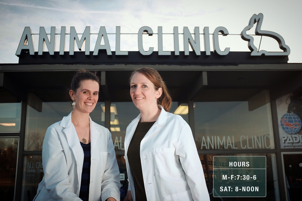 This image is a placeholder. I think we can do lots better obviously. Probably an image of the front of the clinic, or I was thinking a nice photo of the two vets out front would be good too.