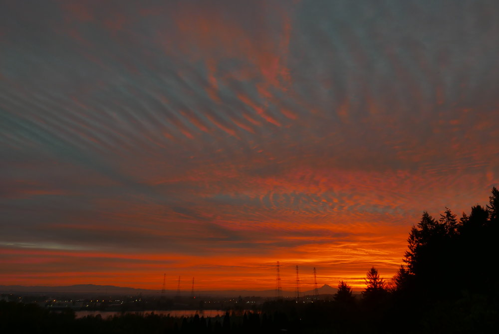 Dawn (from right to left): forest, Mt Hood, Willamette River, frog wetland (below frame).
