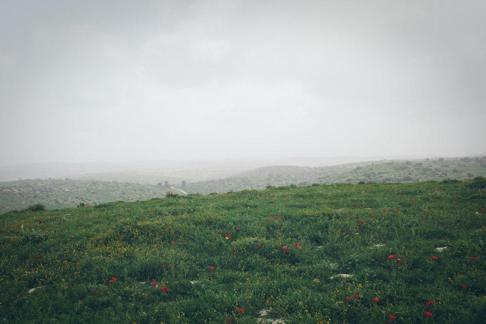 ISRAEL-JERUSALEM-NYC-CYNTHIACHUNG-0752.jpg
