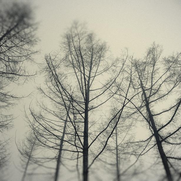 whispers_VIII.jpg