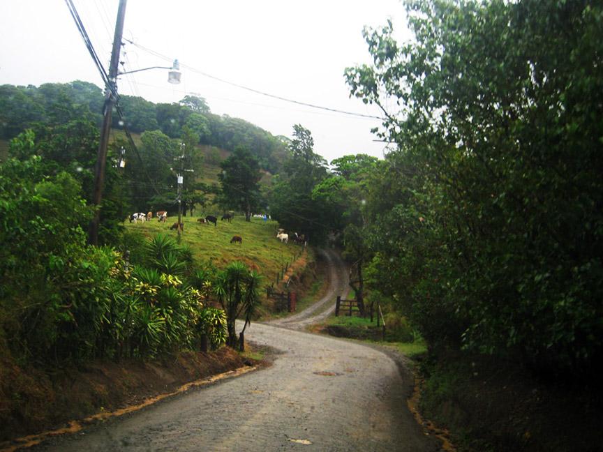madelene-farin-costa-rica-119.jpg