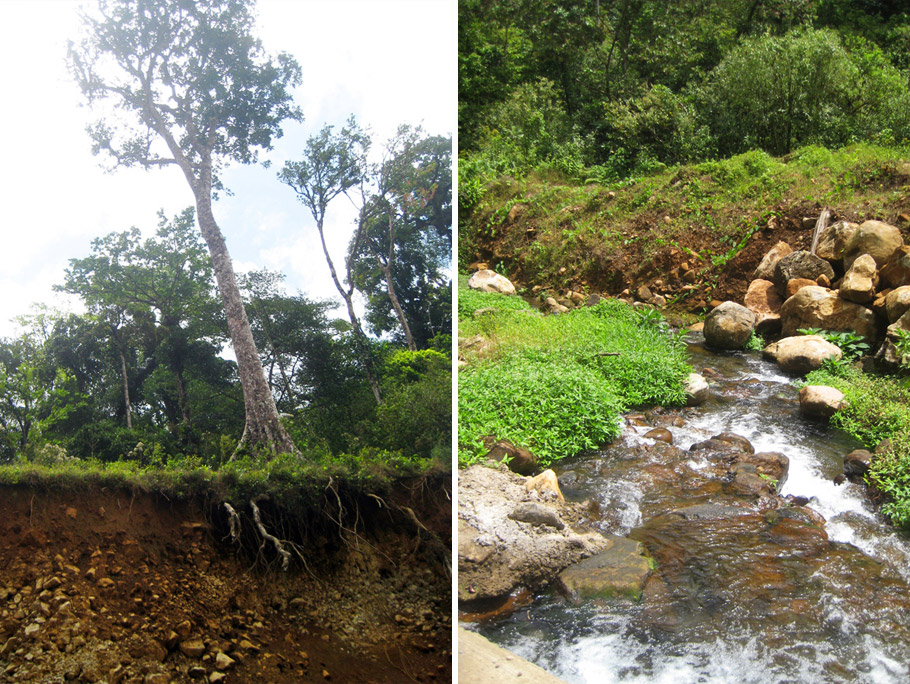 madelene-farin-costa-rica-131.jpg