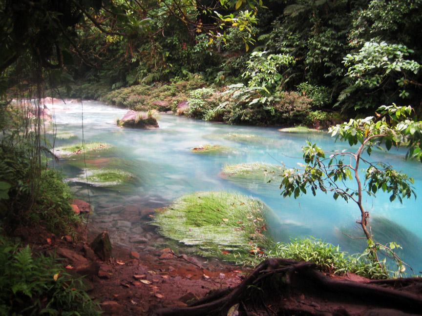 madelene-farin-costa-rica-139.jpg