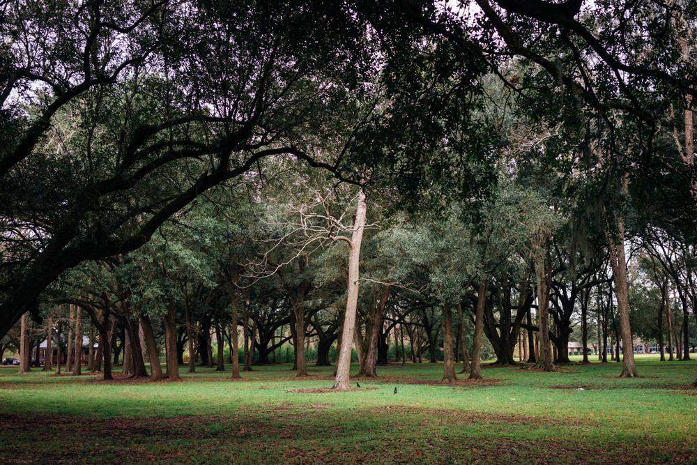 madelene-farin-new-orleans-136.jpg