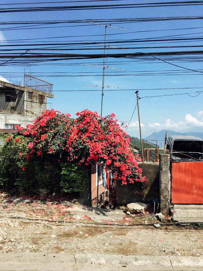 Madelene-Farin-Philippines-030.jpg
