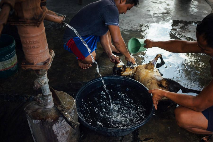 Madelene-Farin-Philippines-113.jpg