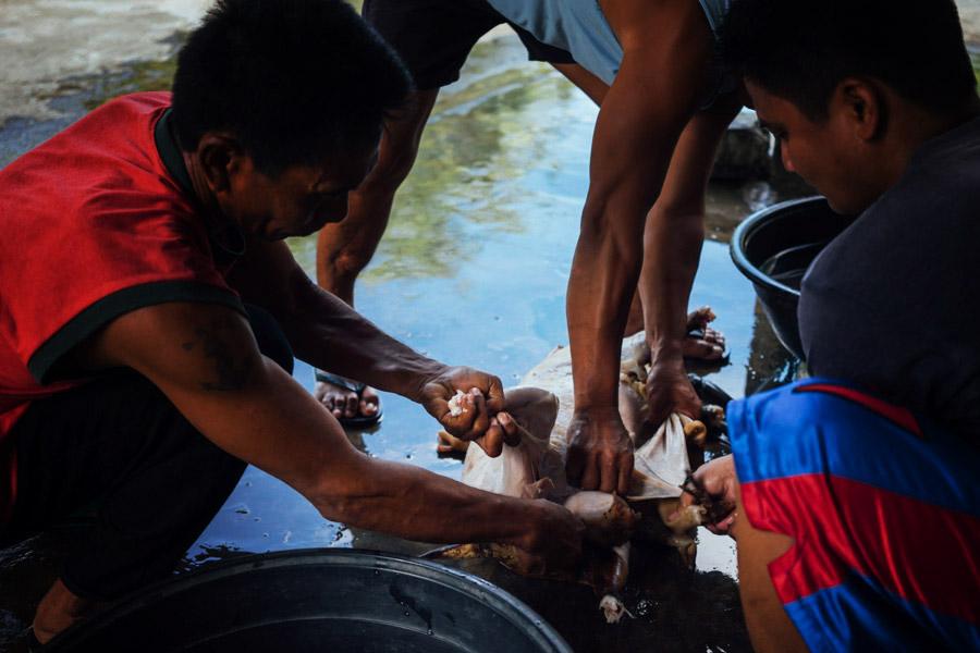 Madelene-Farin-Philippines-115.jpg