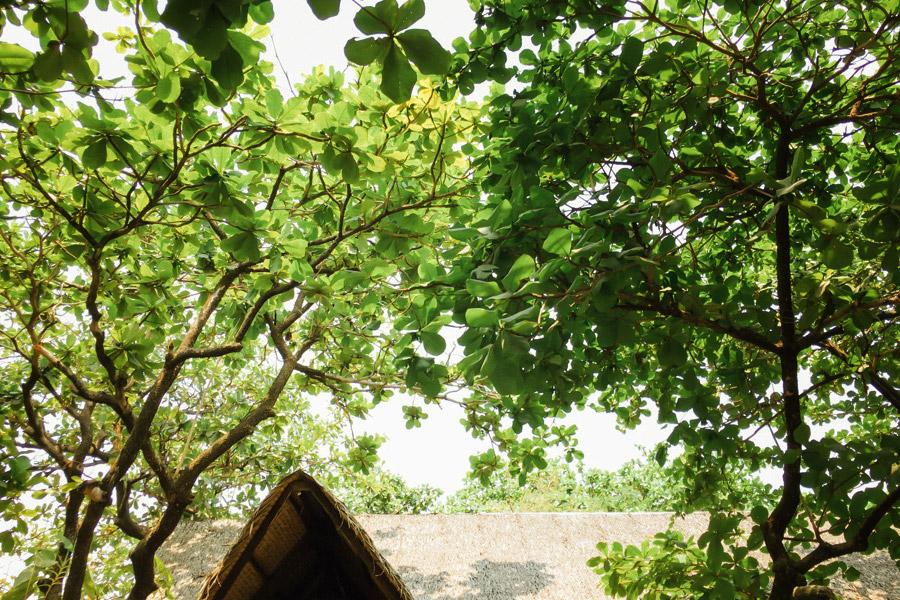 Madelene-Farin-Philippines-110.jpg