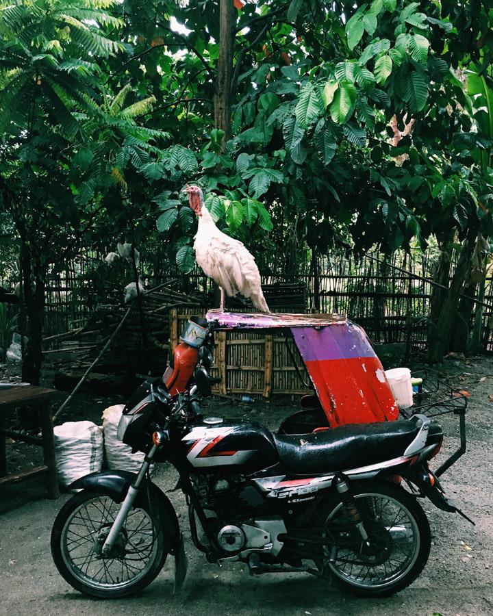 Madelene-Farin-Philippines-162.jpg
