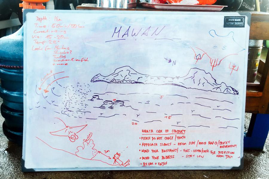 Madelene-Farin-Indonesia-0050.jpg