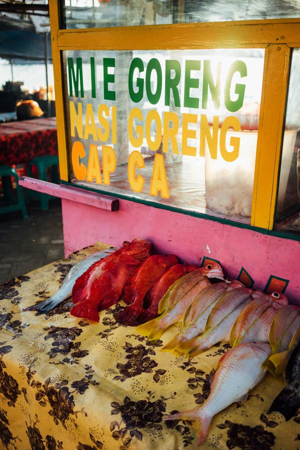 Madelene-Farin-Indonesia-0087.jpg