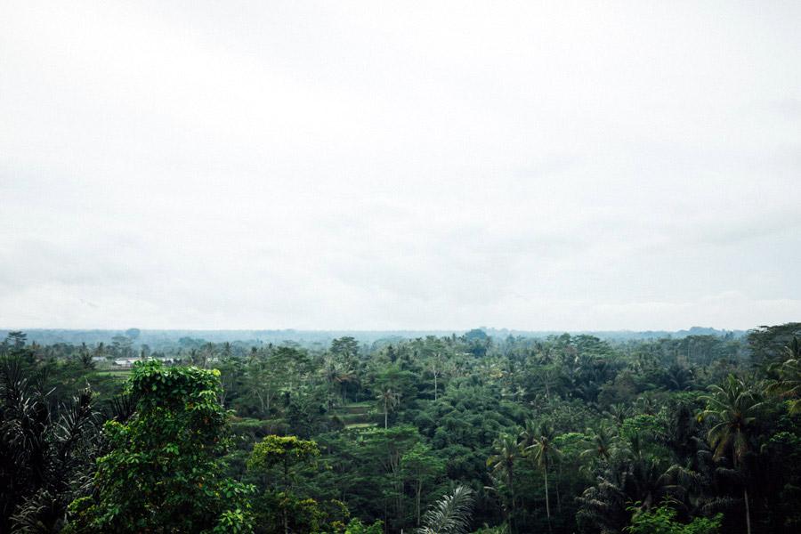 Madelene-Farin-Indonesia-0263.jpg