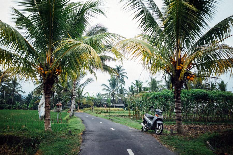 Madelene-Farin-Indonesia-0265.jpg