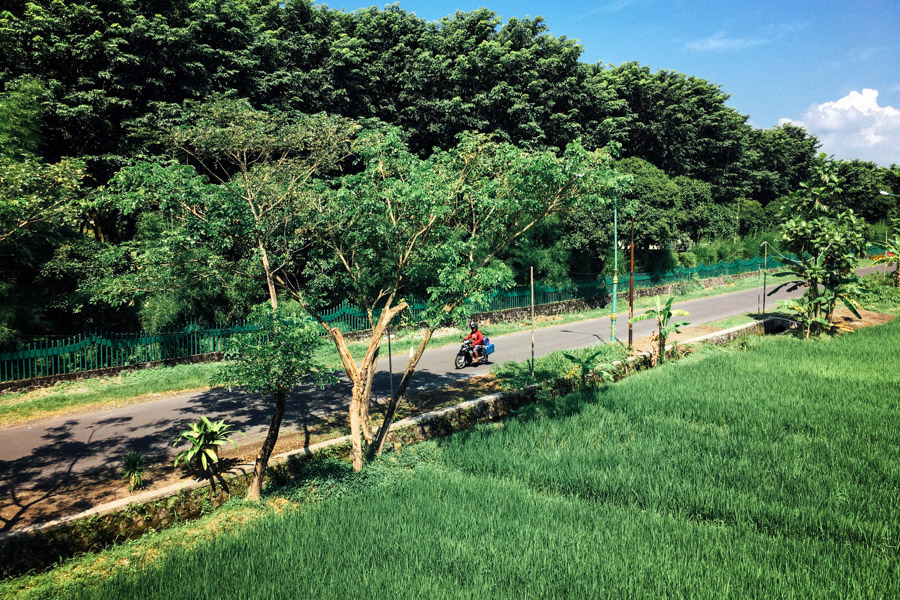 Madelene-Farin-Indonesia-0561.jpg