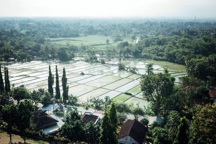 Madelene-Farin-Indonesia-0593.jpg