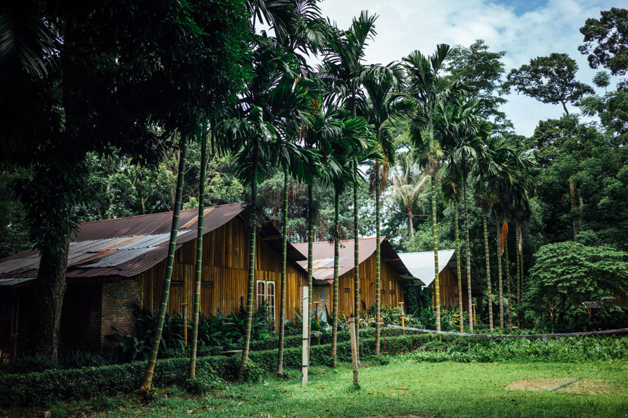 Madelene-Farin-Indonesia-0697.jpg