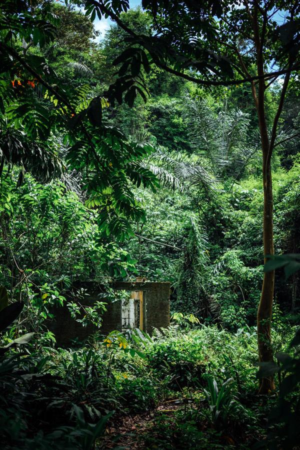 Madelene-Farin-Indonesia-0700.jpg