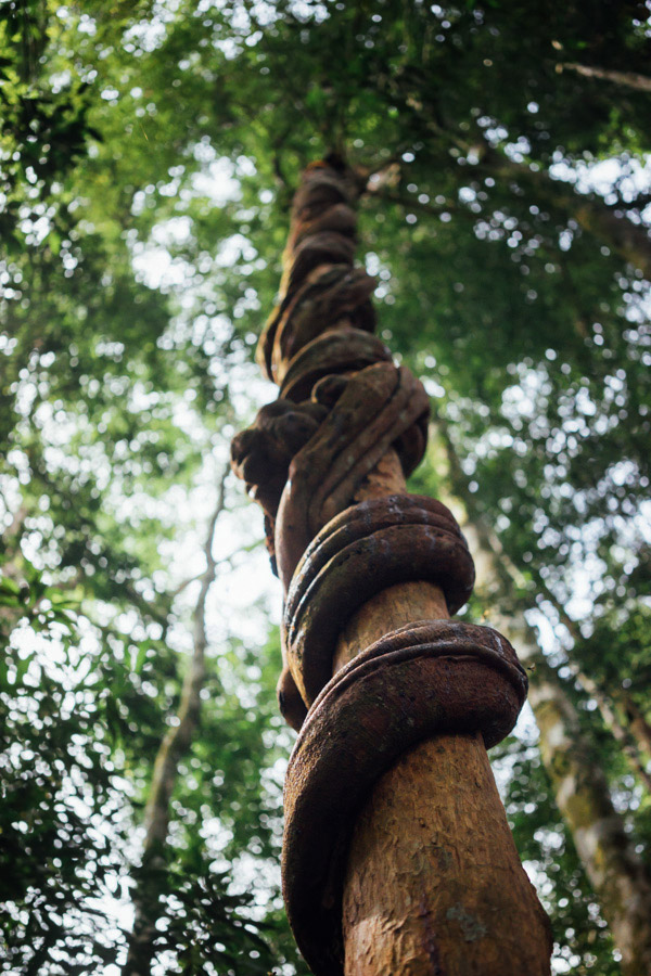 Madelene-Farin-Indonesia-0839.jpg