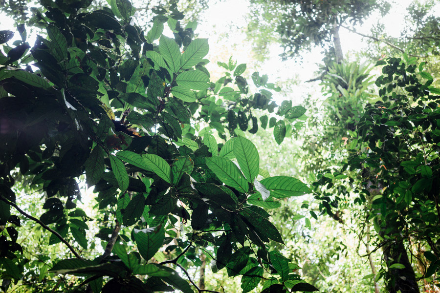 Madelene-Farin-Indonesia-0846.jpg