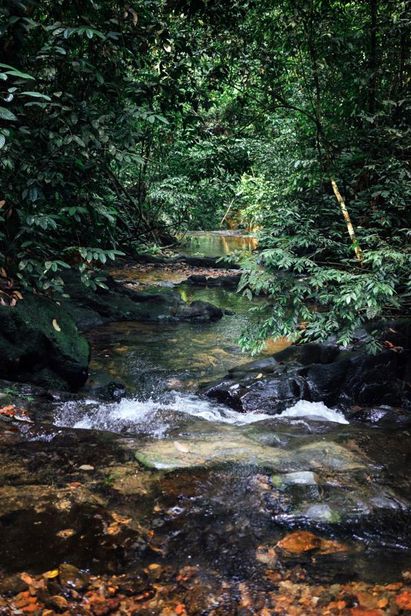 Madelene-Farin-Indonesia-0848.jpg