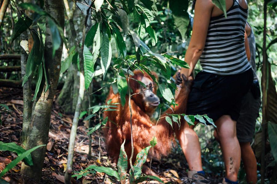 Madelene-Farin-Indonesia-0869.jpg
