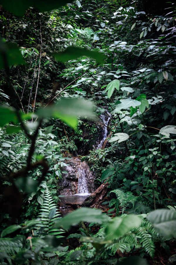 Madelene-Farin-Indonesia-0874.jpg