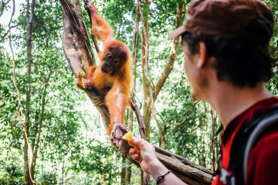 Madelene-Farin-Indonesia-0960.jpg