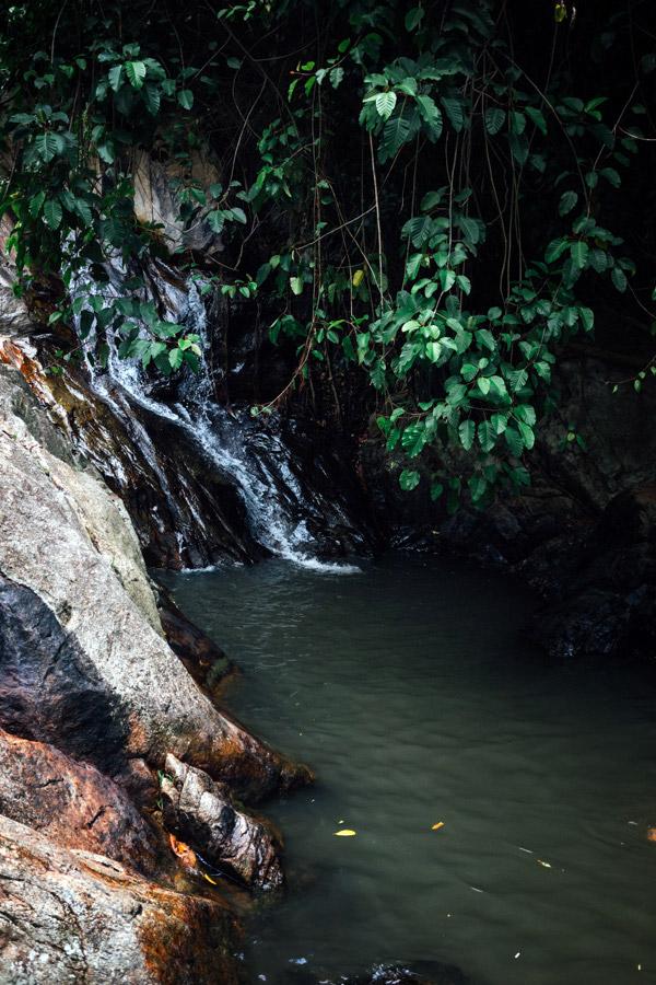 Madelene-Farin-Thailand-103.jpg