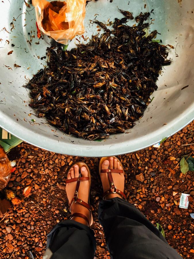 Madelene-Farin-Cambodia-1011.jpg