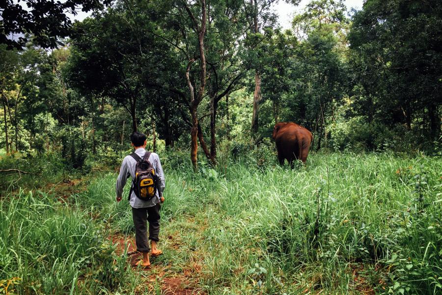 Madelene-Farin-Cambodia-1032.jpg