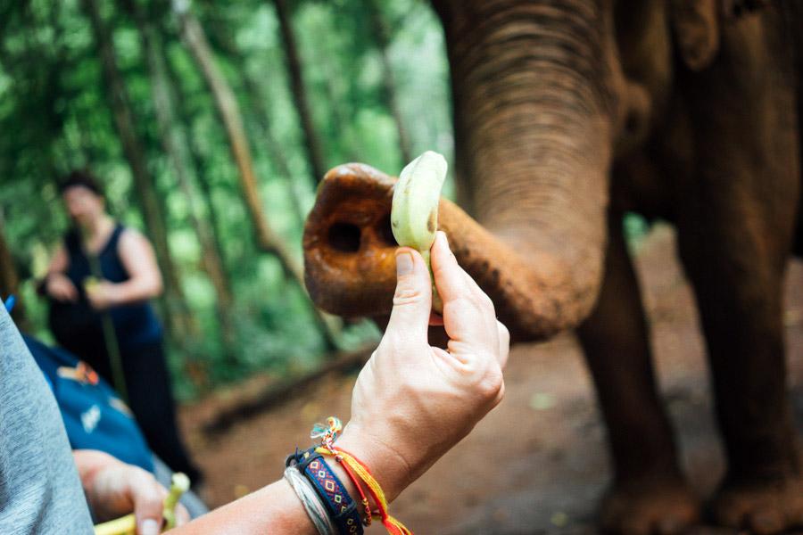 Madelene-Farin-Cambodia-1044.jpg