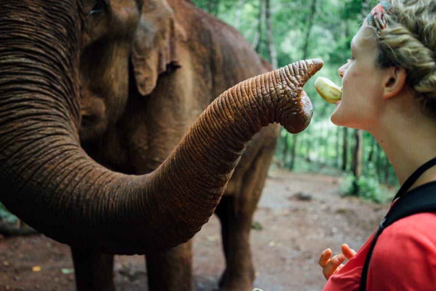 Madelene-Farin-Cambodia-1046.jpg