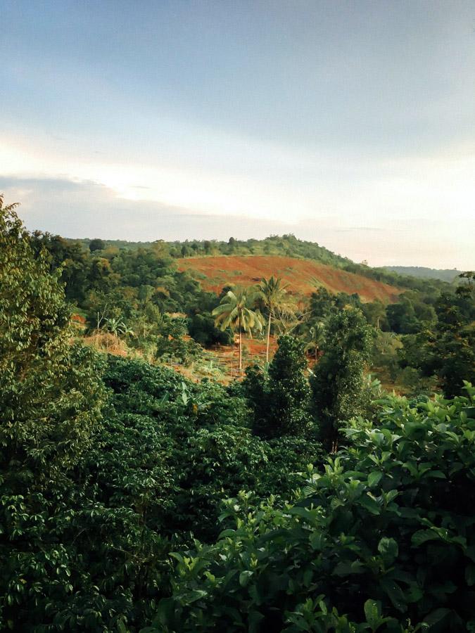 Madelene-Farin-Cambodia-1073.jpg