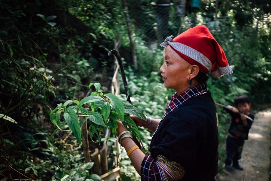 Madelene-Farin-Vietnam-0993.jpg