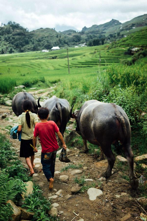 Madelene-Farin-Vietnam-0938.jpg