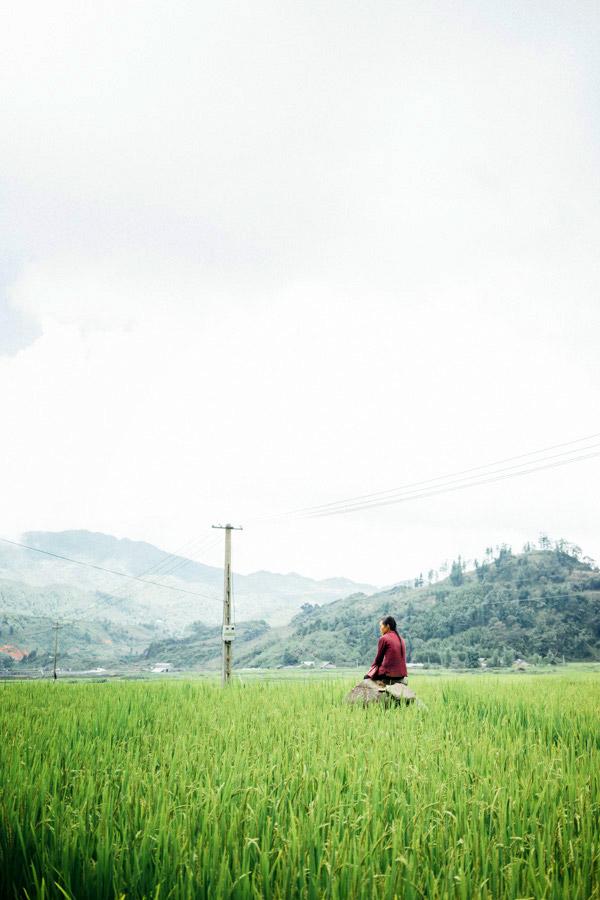 Madelene-Farin-Vietnam-0946.jpg
