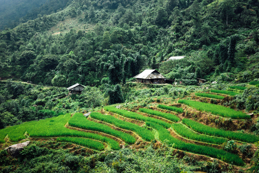 Madelene-Farin-Vietnam-1041.jpg