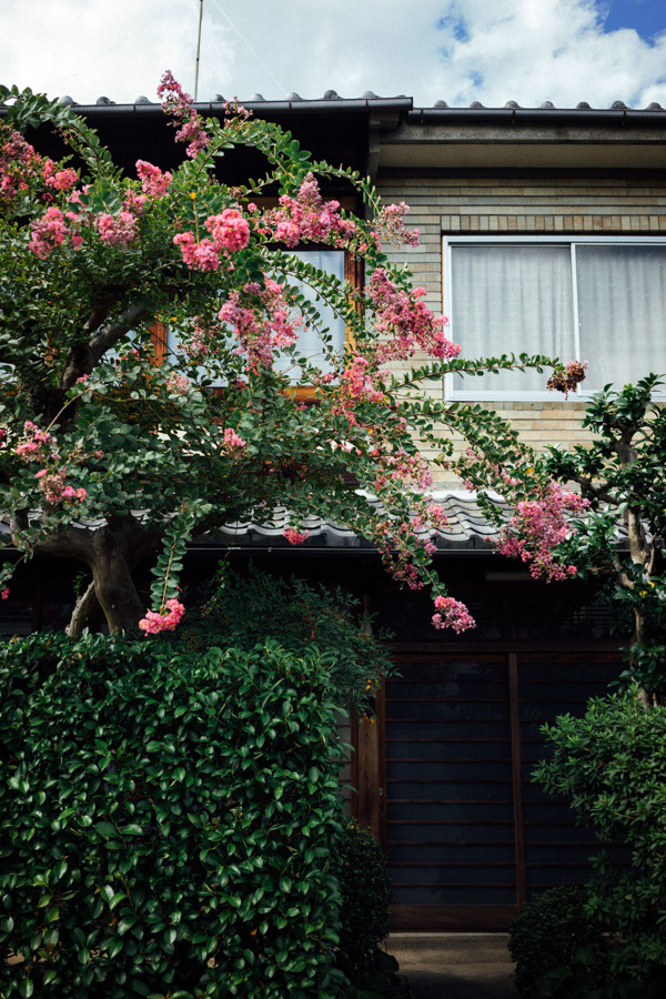 Madelene-Farin-Japan-0194.jpg