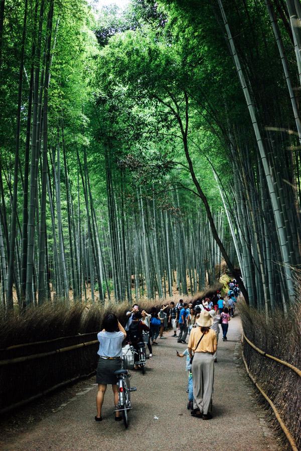 Madelene-Farin-Japan-0208.jpg