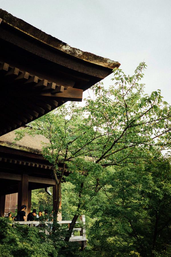 Madelene-Farin-Japan-0249.jpg