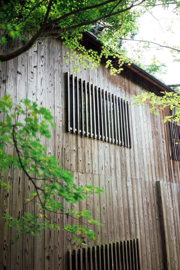 Madelene-Farin-Japan-0275.jpg