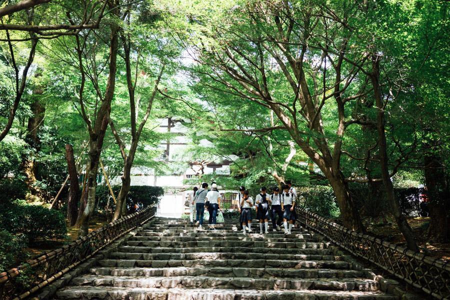 Madelene-Farin-Japan-0345.jpg