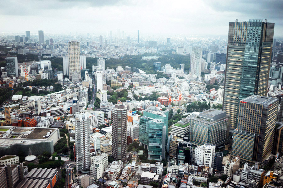 A view of just a section of this vast city from the 52nd floor of the Roppongi Tower.
