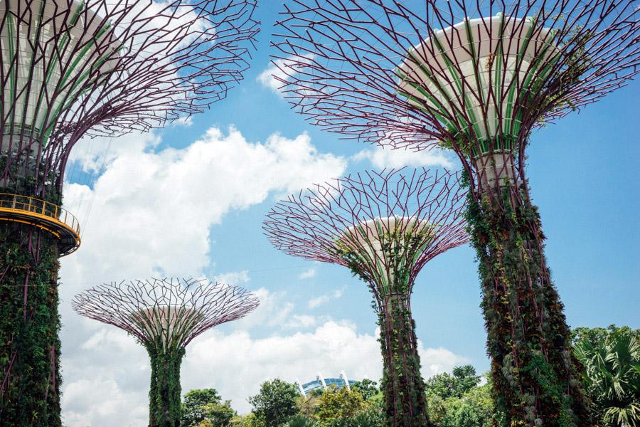 Madelene-Farin-Singapore-0043.jpg