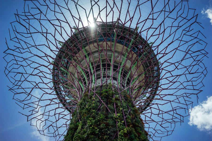 Madelene-Farin-Singapore-0044.jpg