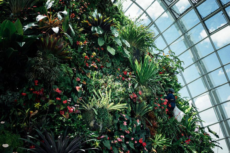 Madelene-Farin-Singapore-0071.jpg