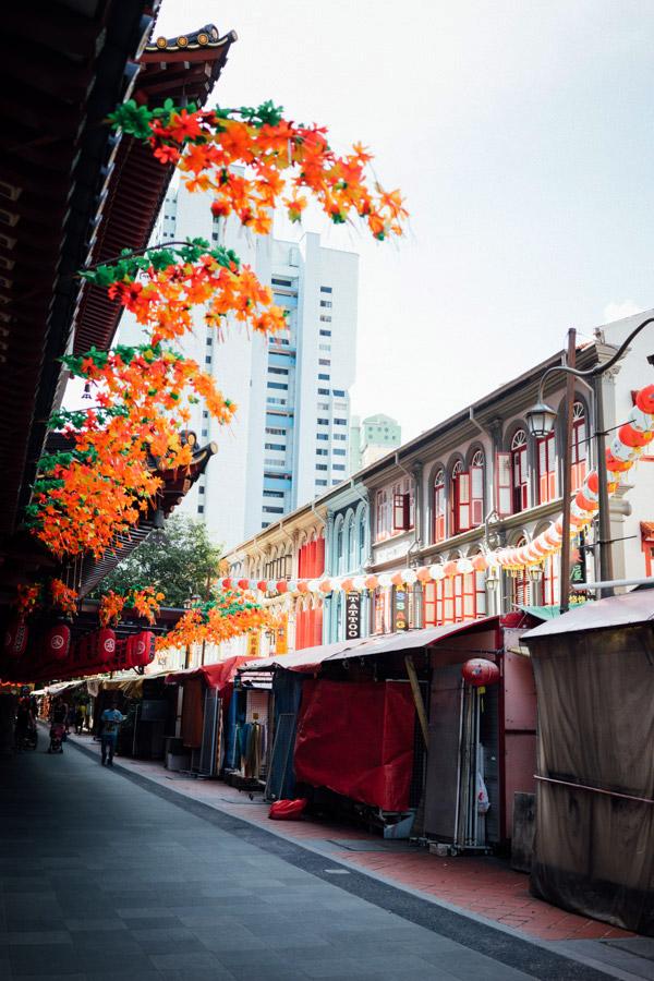 Madelene-Farin-Singapore-0081.jpg