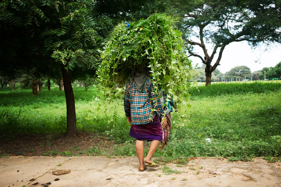 Madelene-Farin-Myanmar-0252.jpg