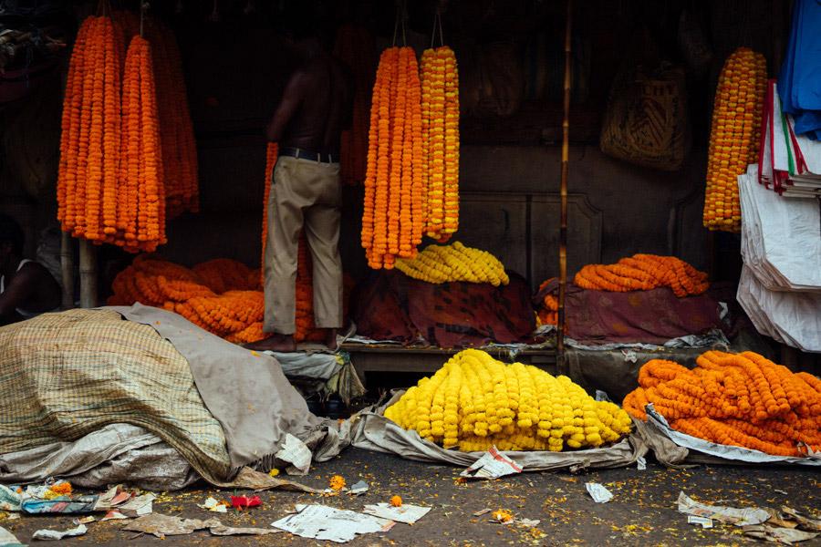Madelene-Farin-India-0022.jpg